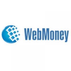 Найман: Скандал с WebMoney — это попытка устранить неугодного конкурента