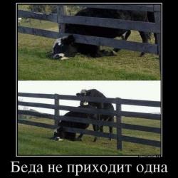 Три плохие новости для Украины говорящие что дефолт близок