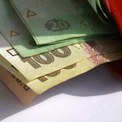 Мнение эксперта: НБУ провоцирует тенизацию доходов