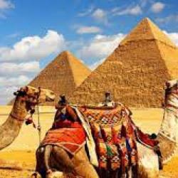 Валютные резервы Египта достигли рекордного уровня за последние 30 лет