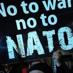 «Вступление Украины в НАТО разорит экономику» — «Оппоблок»