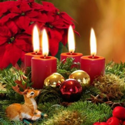 Новый украинский банковский портал поздравляет своих читателей с Новым годом!