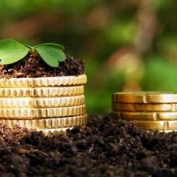 В НБУ объяснили, как банки будут кредитовать фермеров после открытия рынка земли