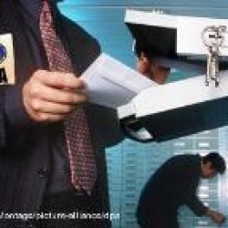 В Украине сформировался новый социальный класс – профессиональные коррупционеры