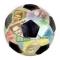 Украина не может определиться с источником финансирования подготовки к Евро-2012 по футболу