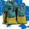 Кредит Всемирного банка — пролог к приватизации украинских земель