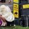 Британская королева разрешила изымать объекты недвижимости у бенефициаров, неспособных объяснить источник средств