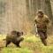 Сезон охоты на Порошенко открыт…