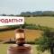 Отмена земельного моратория подстегнет украинскую экономику аж на 2% -  Всемирный банк