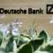 Сотрудников Deutsche Bank обвиняют в даче взятки советнику королевской семьи Саудовской Аравии